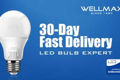 ¿Por qué sólo WELLMAX podría ayudar al comerciante LED con 3 millones de bombillas LED de licitación?