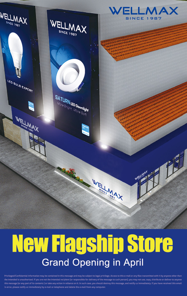 WELLMAX flagship store